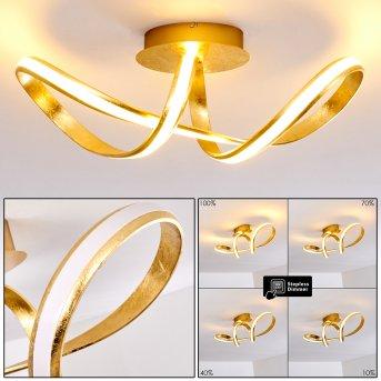 Woyens Ceiling Light LED gold, 1-light source
