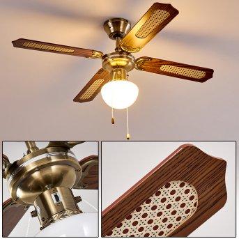 Ceiling Fan Morea Dark wood, antique brass, 1-light source