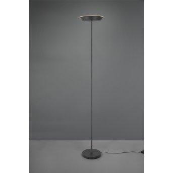 Reality SWONA Floor Lamp LED black, 1-light source