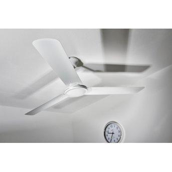 Globo FERRO fan white, Remote control