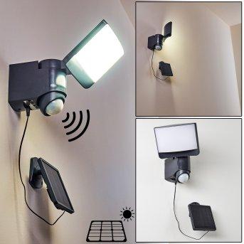 LARVIK Outdoor Wall Light LED anthracite, 1-light source, Motion sensor