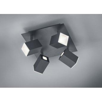 Trio LAGOS Ceiling light LED black, 4-light sources