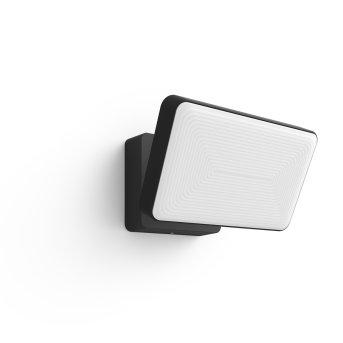 Philips HUE WHITE WELCOME Floodlight LED black, 1-light source, Colour changer