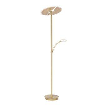 Paul Neuhaus ARTUR Floor Lamp LED brass, 1-light source