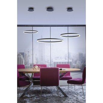 Paul Neuhaus TITUS Pendant Light LED anthracite, 1-light source