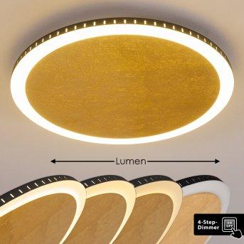 AITRACH Ceiling Light LED white, gold, 1-light source