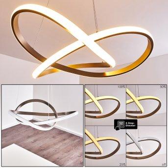 Pitasch Pendant Light LED matt nickel, 1-light source