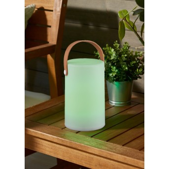 Reality ARUBA Outdoor Light LED white, 1-light source, Colour changer