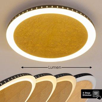 AITRACH Ceiling Light LED gold, 1-light source
