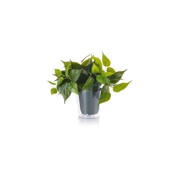 Trio Plant flower LED green