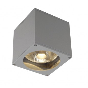Outdoor Wall Light SLV BIG THEO grey, silver, 1-light source