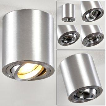 Ceiling Light Barbuda silver, 1-light source