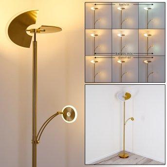 CAZIS Floor Lamp LED brass, 1-light source