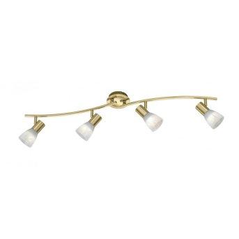 Trio LEVISTO ceiling spotlight LED brass, 4-light sources